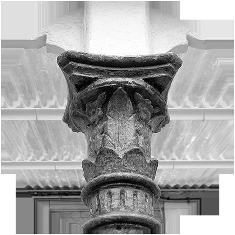 logo ADVN